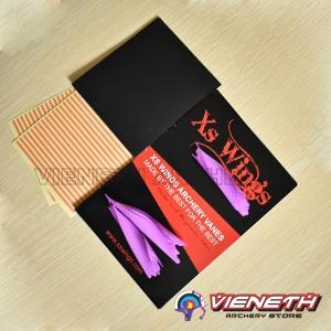 Xs wings (2)
